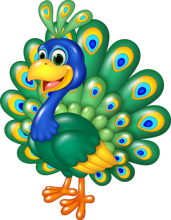 Vector illustration of Cartoon funny peacock isolated on white background
