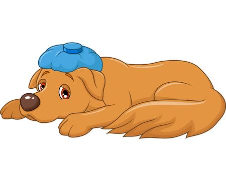 fiebre: Ilustración del vector del perro enfermo de la historieta con la bolsa de hielo, aislados sobre fondo blanco