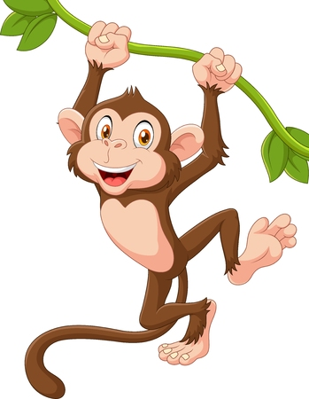 animales de la selva: Ilustración vectorial de lindo mono colgando de los animales en una vid