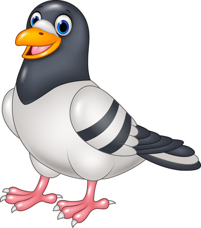 standing on white background: Vector illustration of Cartoon funny pigeon isolated on white background