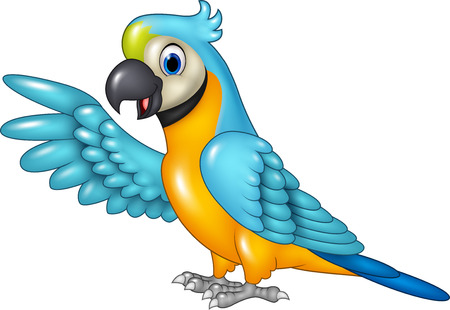 Vector illustration of Cartoon funny macaw presenting isolated on white background