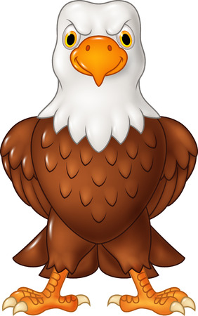 cheerful cartoon: Vector illustration of Cartoon bald eagle posing isolated on white background