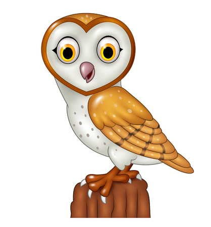 Vector illustration of Cartoon barn owl posing isolated on white background