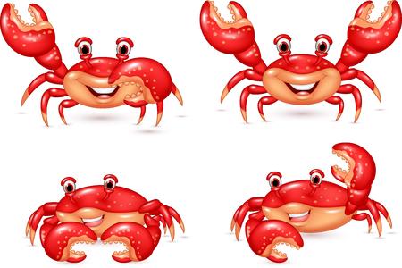 cangrejo caricatura: Ilustraci�n del vector de la colecci�n de cangrejo feliz historieta fij� en el fondo blanco Vectores