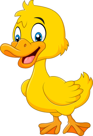Vector illustration of Cute baby duck posing isolated on white background Ilustração