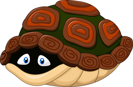 cute cartoon animals: Vector illustration of Cute turtle hides in its shell on white background