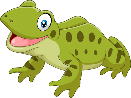 hungry: Vector illustration of Cartoon funny frog sitting isolated on white background