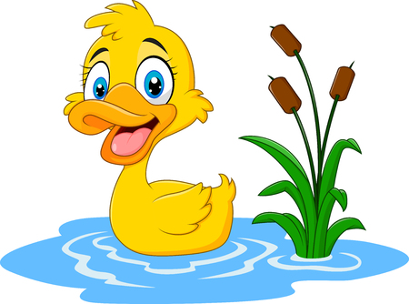 Vector illustration of Cute baby duck floats on water Çizim
