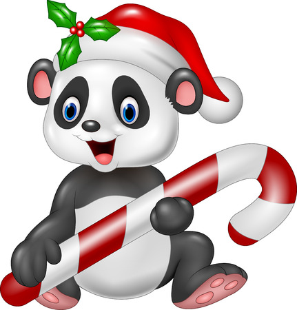 bear berry: Vector illustration of Cute baby panda holding Christmas candy Illustration