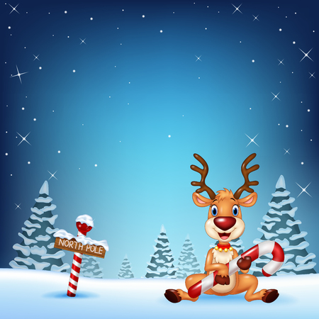 north pole sign: Vector illustration of Cartoon deer holding Christmas candy with winter background Illustration