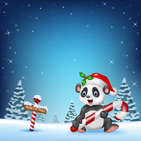 north pole: Vector illustration of Cartoon funny panda sitting with a north pole wooden sign Illustration