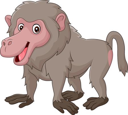 Vector illustration of Cartoon funny baboon isolated on white bacjground