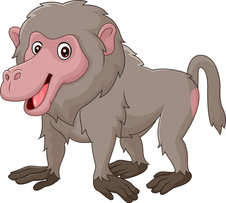 baboon: Vector illustration of Cartoon funny baboon isolated on white bacjground