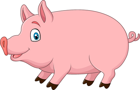 stocky: Vector illustration of Cute pig isolated on white background