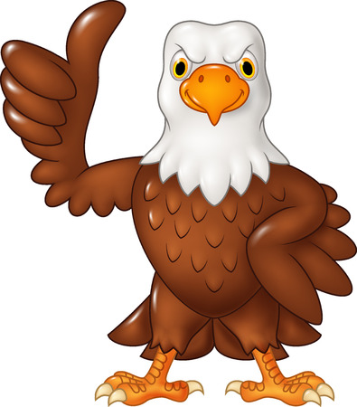 hawks: Vector illustration of Cartoon funny eagle giving thumb up isolated on white background