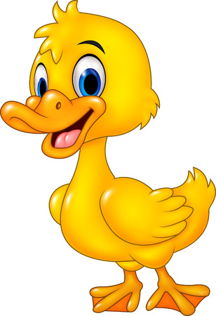 farm cartoon: Vector illustration of Cartoon funny baby duck posing isolated on white background Illustration