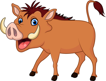 stocky: Vector illustration of Cartoon warthog isolated on white background