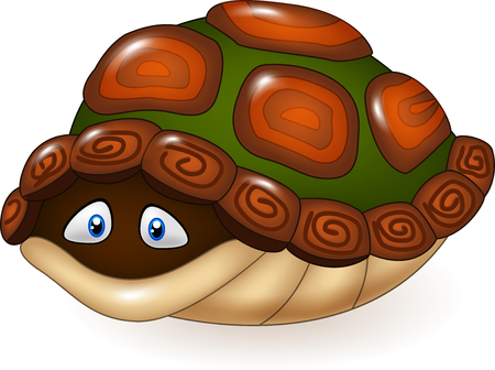 shell: Vector illustration of Cartoon funny turtle hides in its shell Illustration