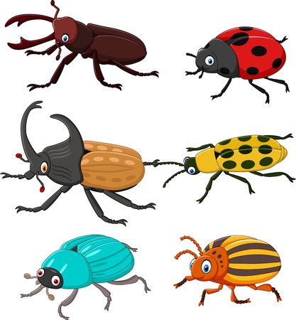 Vector illustration of Cartoon funny beetle collection Illustration