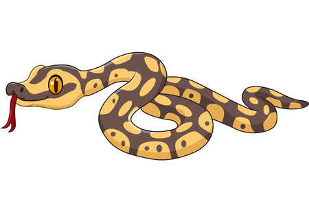 python: Vector illustration of Cartoon snake character isolated on white background