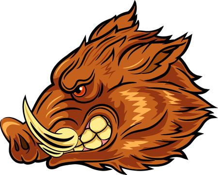 Ilustración del vector de cabeza de la mascota de jabalí
