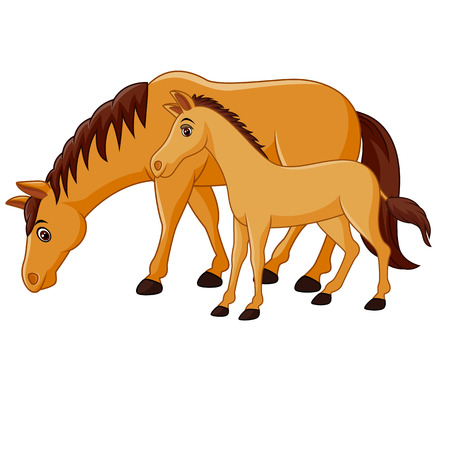 brown horse: Vector illustration of Cartoon happy brown horse with a foal
