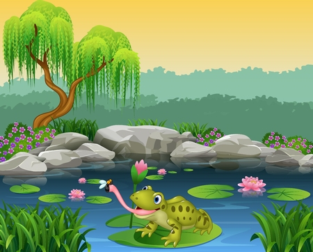 ponds: Vector illustration of Cartoon frog catching fly on the lily water Illustration