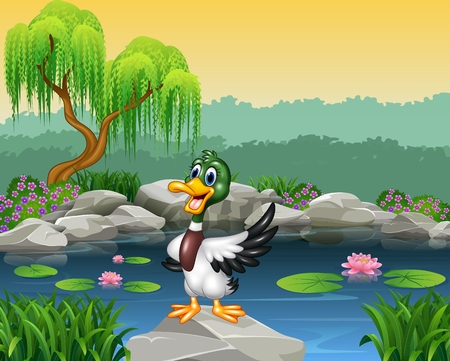 ponds: Vector illustration of Cartoon funny duck presenting