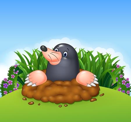 mole: Vector illustration of Cartoon funny mole in the jungle