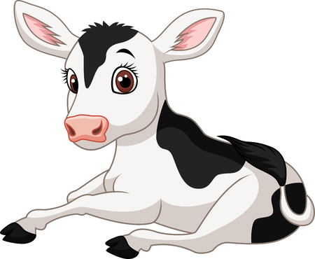 Vector illustration of Cartoon funny baby cow sitting isolated on white background Ilustração