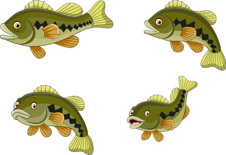 Vector illustration of Cartoon funny bass fish collection Çizim