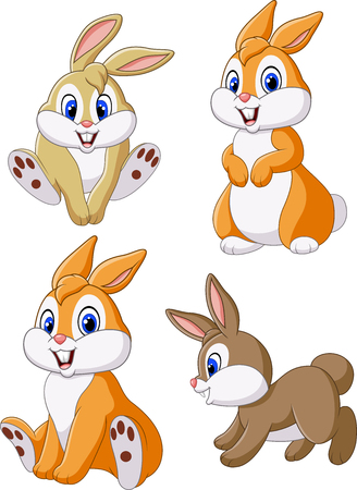 furry tail: Vector illustration of Cute bunny collection set isolated on white background