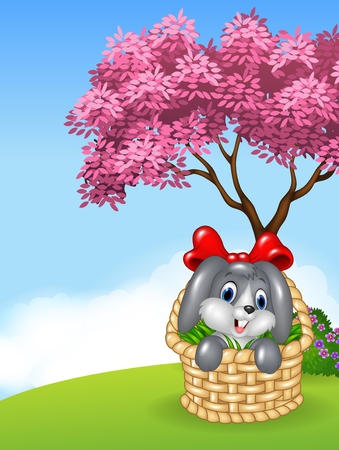 fur: Vector illustration of Cute bunny in a basket with red ribbon