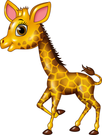 jirafa caricatura: ilustraci�n vectorial de dibujos animados jirafa divertida beb� aislado en el fondo blanco