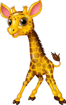 Vector illustration of Cartoon baby giraffe isolated on white background