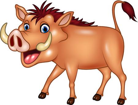 stocky: Vector illustration of Cartoon warthog isolated on white background