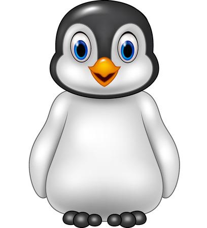 aves caricatura: Ilustración del vector del pingüino lindo bebé posando aislados sobre fondo blanco