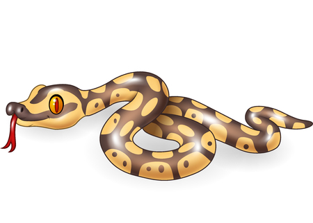 Vector illustration of Cartoon snake character isolated on white background