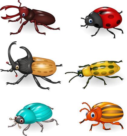 catarina caricatura: Ilustraci�n del vector de la colecci�n del escarabajo de la historieta divertida Vectores