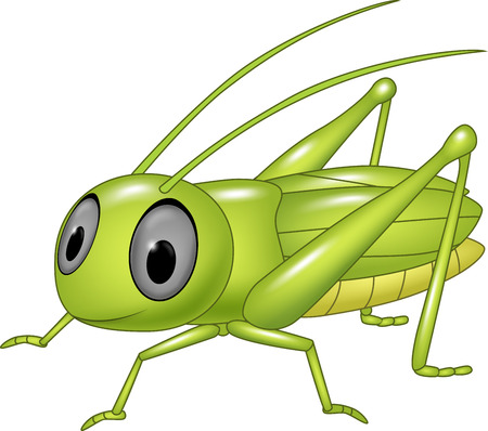 grig: Vector illustration of Cute grasshopper posing isolated on white background