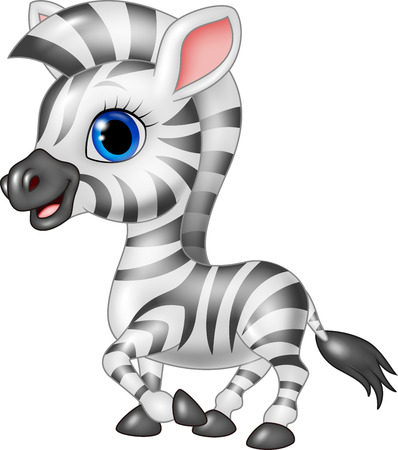 personages: Vector illustration of Cute zebra posing isolated on white background