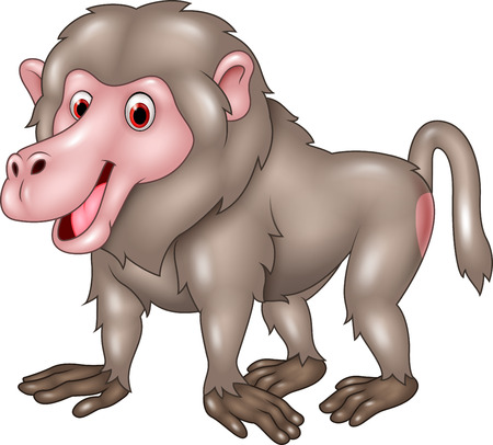 baboon: Vector illustration of Cartoon funny baboon isolated on white bacjground