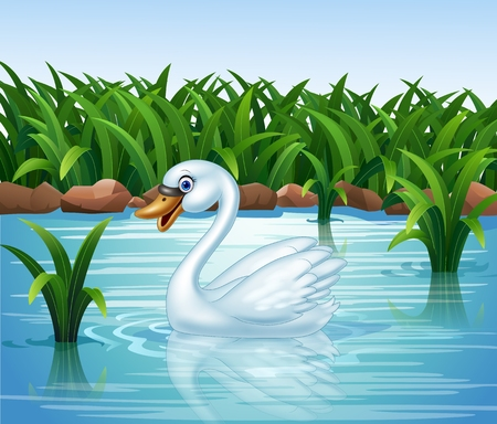 Vector illustration of Cartoon beauty swan floats on river