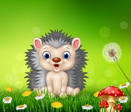 cartoon hedgehog: Vector illustration of Cartoon hedgehog sitting on grass background