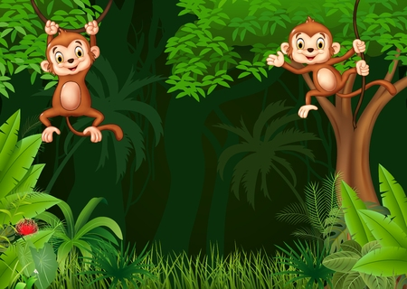 chimpances: Ilustración del vector de Hangin lindo mono en la selva