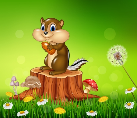 bush babies: Vector illustration of Happy little chipmunk holding nut on Beautiful grass background