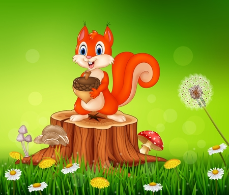 pinecone: Vector illustration of Cartoon squirrel holding pine cone on tree stump in summer season background