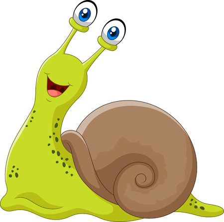 cochlea: Vector illustration of Cute snail isolated on white background Illustration