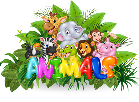 wild animal: Vector illustration of Word animal with cartoon wild animal Illustration