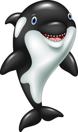 Vector illustration of Cartoon funny killer whale standing